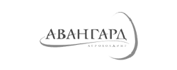 Авангард холдинг logo